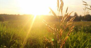 Sluneční alergie dokáže pořádně potrápit