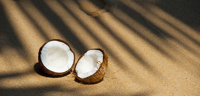 Vychutnejte si domácí kokosové mléko. Víme, jak na něj