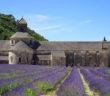 Vydejte se na dovolenou do levandulových polí do Provence.