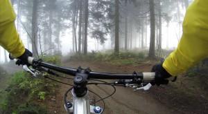cyklo kross