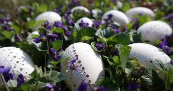 velikonoční kraslice jaro