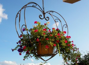 závěsný květináč