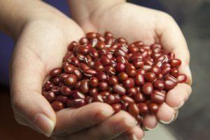 Propadněte zdravým receptům z adzuki fazolí